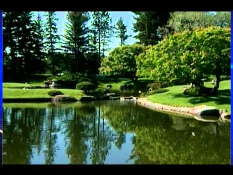 Nikka Yuko Garden Honours - CTV Lethbridge - June 07/13