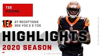 Tee Higgins Full Rookie Season Highlights