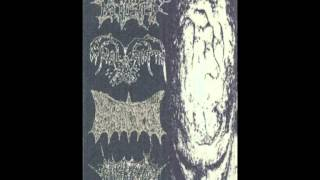 Anal Birth - 15 Untitled Tracks