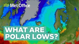 What are polar lows?