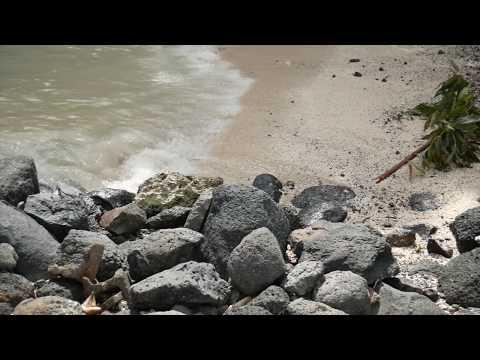 Samoa Trip   Holiday Vlog