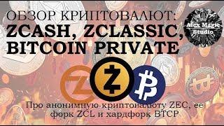 Обзор криптовалют Zcash, ZClassic и Bitcoin Private