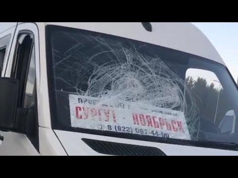 В Сургуте неизвестные разгромили маршрутку из Ноябрьска.