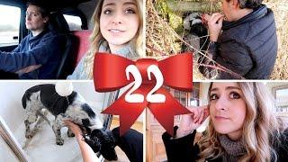 Doggy DISASTER! Vlogmas 23
