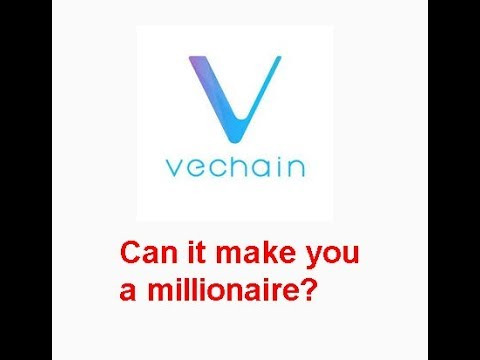 VeChain(VET) make you a millionaire? How much do you need?