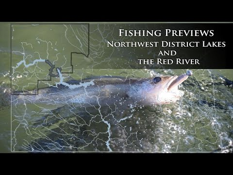 Fishing Reports - Northwest and Red River - NDGNF
