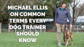 Michael Ellis on Common Terms Every Dog Trainer Should Know