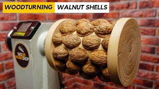 Woodturning Walnut Shells Into A Lamp