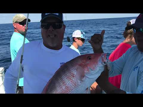 Offshore Fishing - W/SaltWalker At South Padre Island, TX
