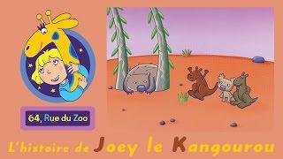 64 Rue du Zoo - L
