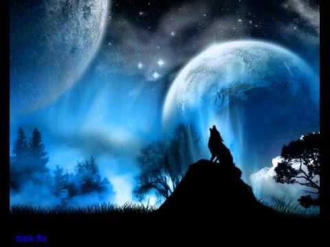 Le Loup Et La Lune Youtube