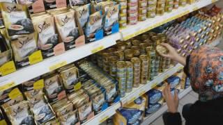 В Москве  -25  Едем за кормом котику