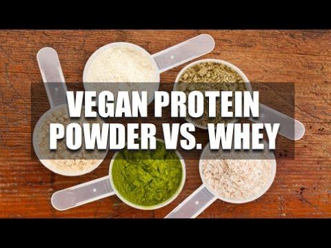 Vegan Protein Powder Vs. Whey Protein?