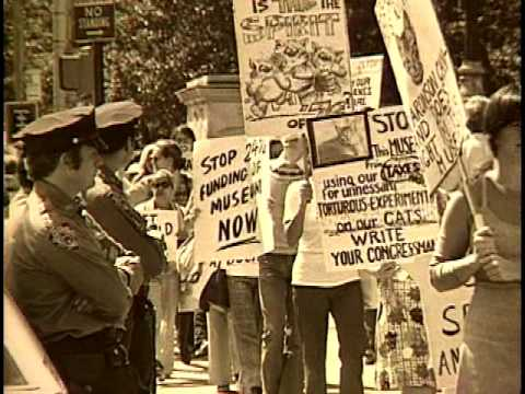 Excerpts from The Activists: A Portrait of Animal Rights activist Henry Spira