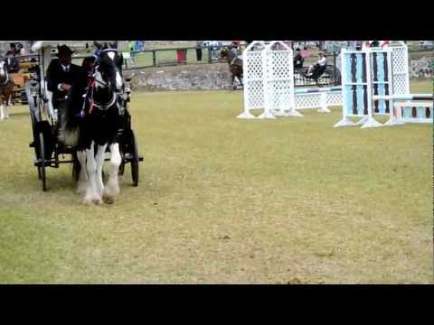 Horse & Carriage, Ag Show, Apr 20 2012