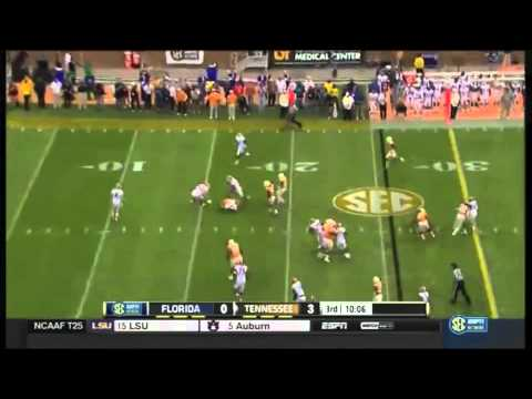 2014: Florida Gators vs. Tennessee Volunteers