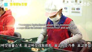표고버섯/청계영농조합  국내최대의 표고버섯 생산유통  …