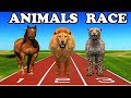 wild animals & domestic animals running race | learn through cartoons for kids children kindergarten