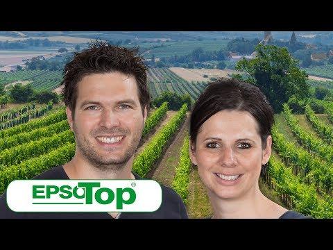 Weinanbau mit Rot- und Weißweinherstellung