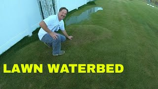 GRASS BUBBLE. LAWN WATERBED