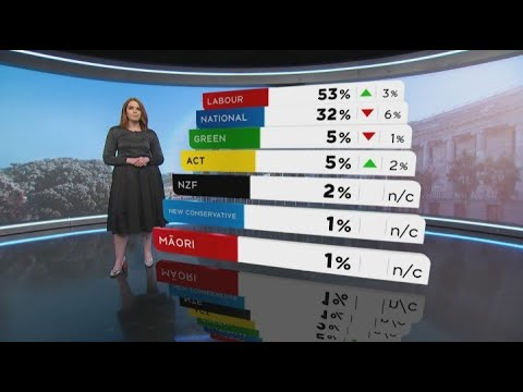 Collins Up As Preferred PM, But National Still In Deep Trouble In 1 NEWS Colmar Brunton Poll