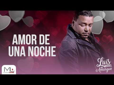 Amor de una Noche - Luis Miguel del Amargue - Audio Oficial