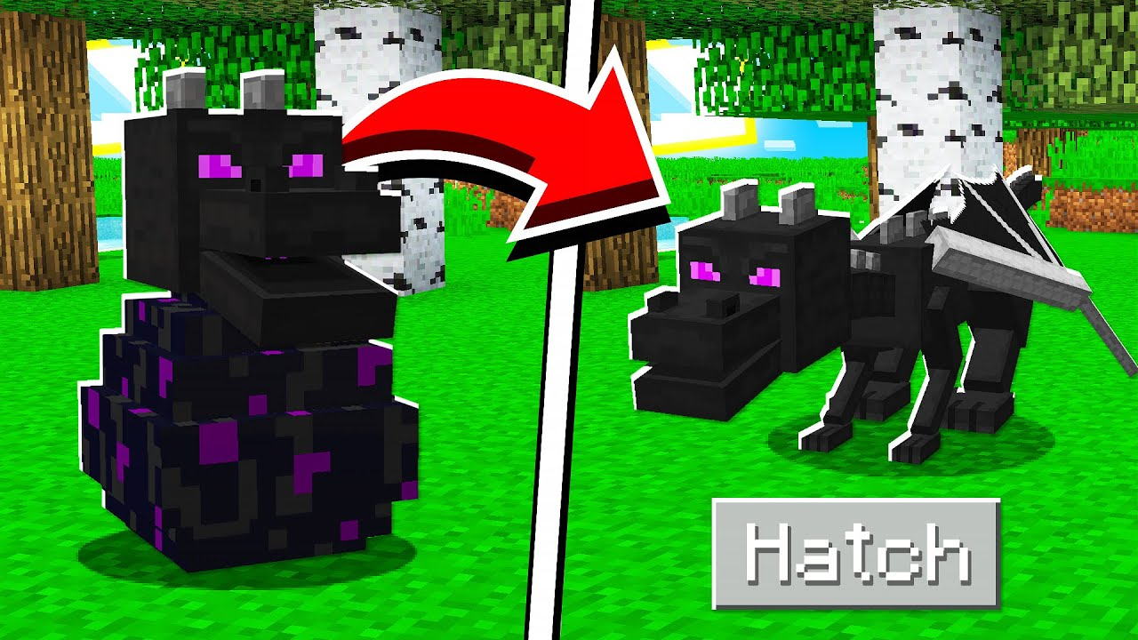 Download How to HATCH the ENDER DRAGON EGG in Minecraft Tutorial!