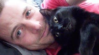 Real Men Love Cats thumbnail