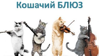 Кошачий Блюз