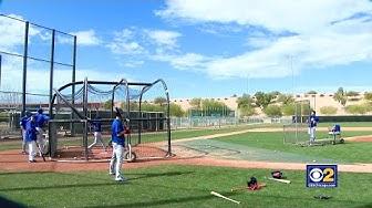 Chicago Cubs Start Spring Training