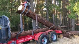 Waldarbeiten Frühling 2018