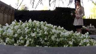 ШВЕЙЦАРИЯ/ЛОЗАННА/КОКО ШАНЕЛЬ(В черте города Лозанна действуют кладбища Буа-де-Во (открыто в 1922 году) и Монтуа (открыто в 1972 году), располож..., 2015-10-05T10:59:20.000Z)