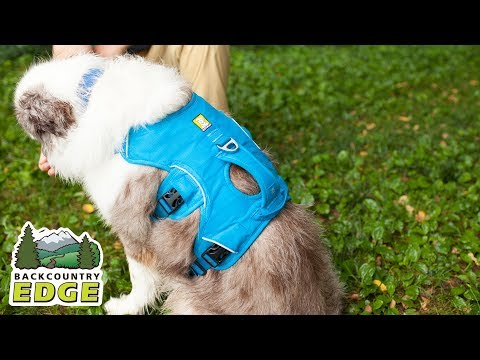 Ruff Wear Web Master - Dog Safety Harness