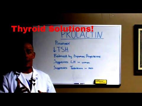 """thyroid-treatment-success-secret-#8-""""prolactin"""""""