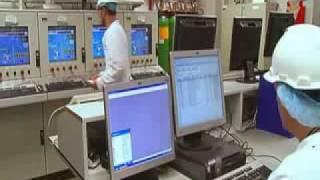 EUKANUBA и IAMS - как производятся корма для животных