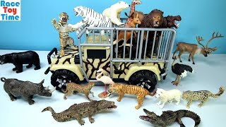Lots of Wild Safari Forest Zoo Animals Toys Collection Video