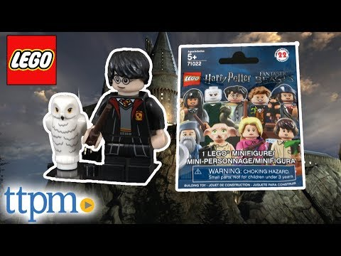 LEGO Harry Potter And Fantastic Beasts Mini Figure 1 Pack From LEGO