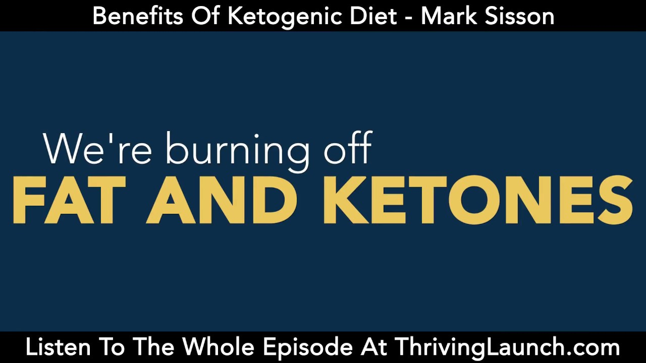 Mark Sisson Diet benefits of ketogenic diet - mark sisson - youtube