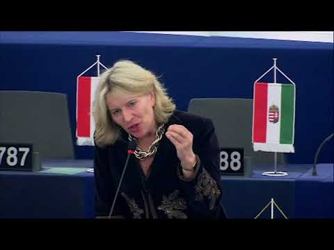Hungary represents the majority of Europe in the migration issue - says Hungarian MEP in Strasbourg