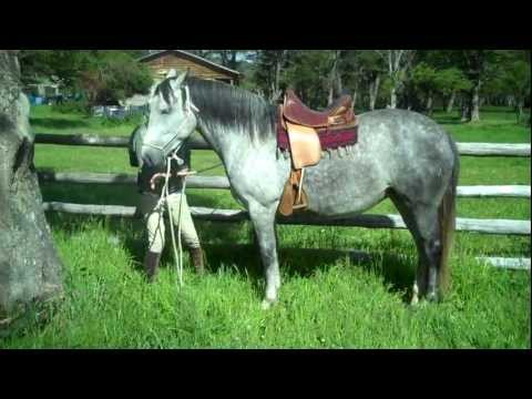 Horseriding holiday Unicorn Trails Chile Patagonia