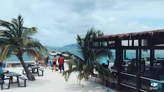 Foxy's Taboo & B-Line Bar British Virgin Islands | St Thomas Boat Charter | Phoenix Island Charters