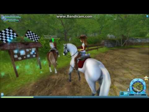 2 pferde kaufen