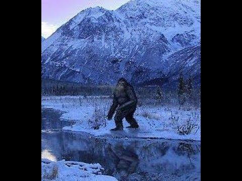 World Bigfoot Radio #40 ~  A parting of ways/ Glagg Saga #7/Kevin