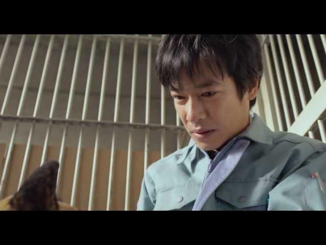 映画『ひまわりと子犬の7日間』予告編(90秒)