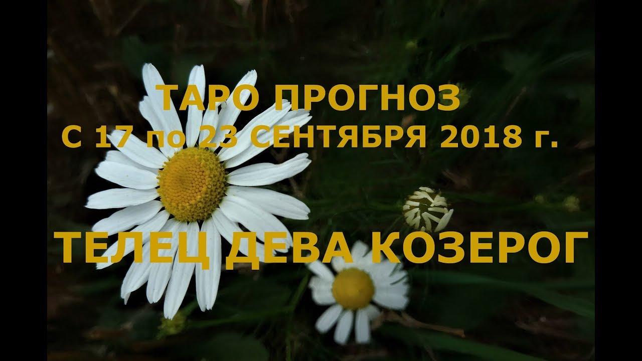Таро прогноз на неделю с 17 по 23 сентября для Тельцов, Дев и Козерогов.