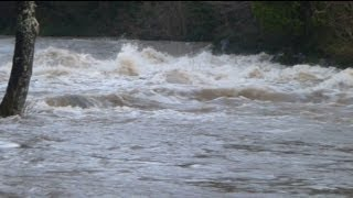 Cenarth Falls In Full Flood (December 2012)