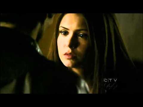 Damon and Elena - the vampire diaries