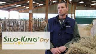 Additif fourrage Silo-King - Vaches allaitantes