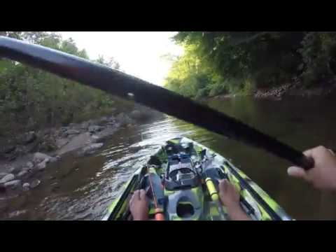 3 WATERS SUMMER SLAM - 3 WATERS BIG FISH 120 - LINVILLE RIVER