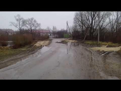 Болото в Красном (Краснинский район, Липецкая область)
